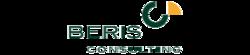 BERIS Consulting GmbH Partner Logo